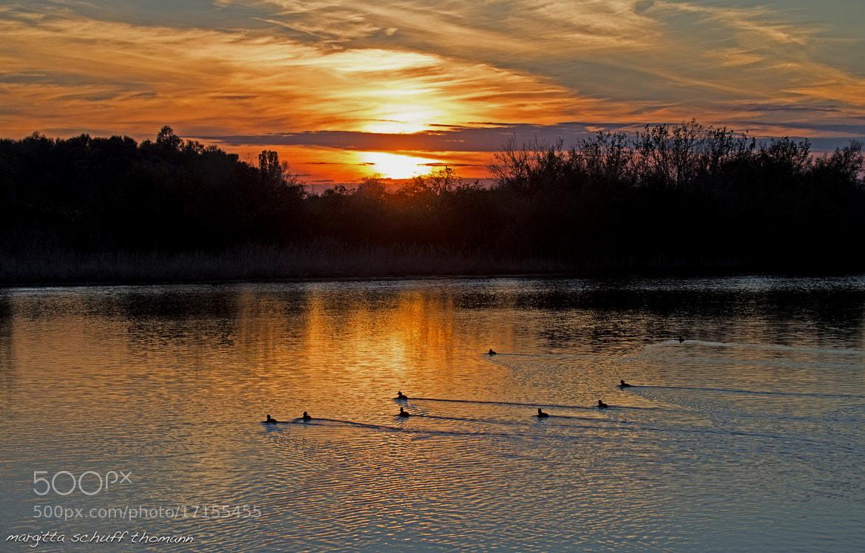 Photograph tramonto in valle cavanata by Margitta Thomann on 500px