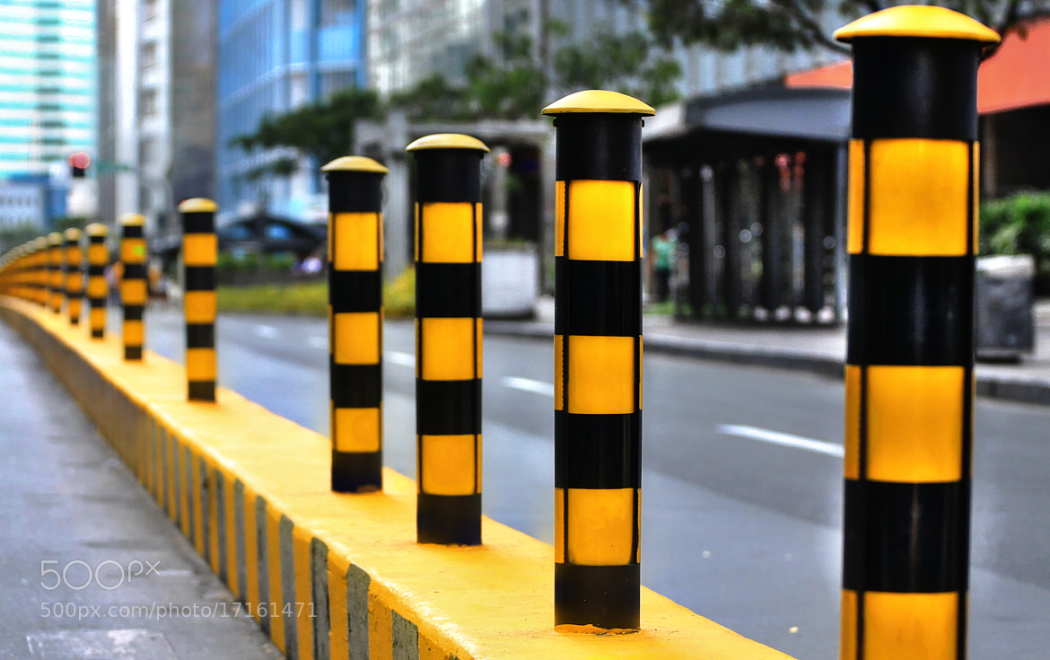 Photograph Yellow by dave balisi on 500px