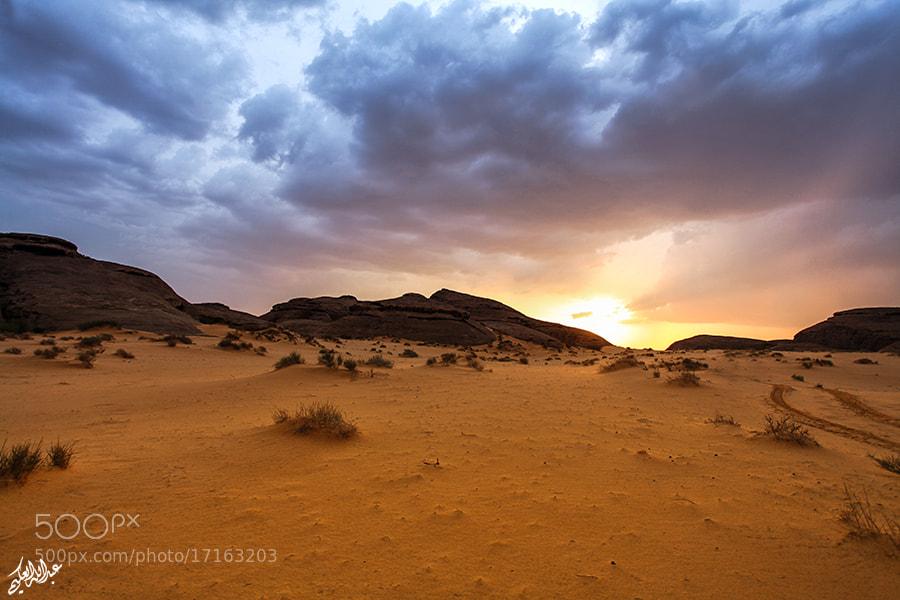 Photograph » Desert  by Abdullah Al-Okime on 500px