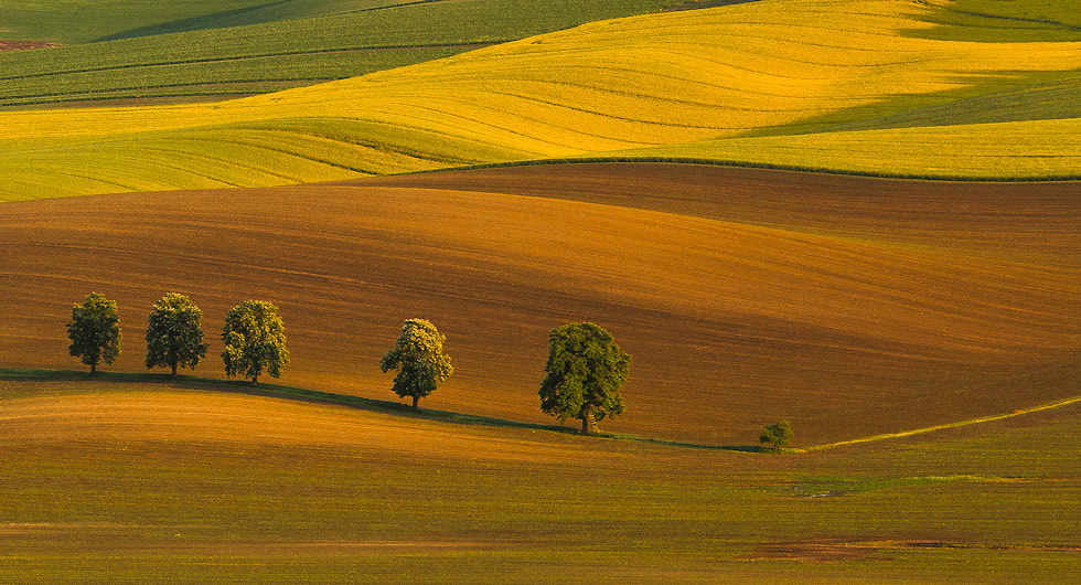 Photograph South Moravia by Peter I on 500px