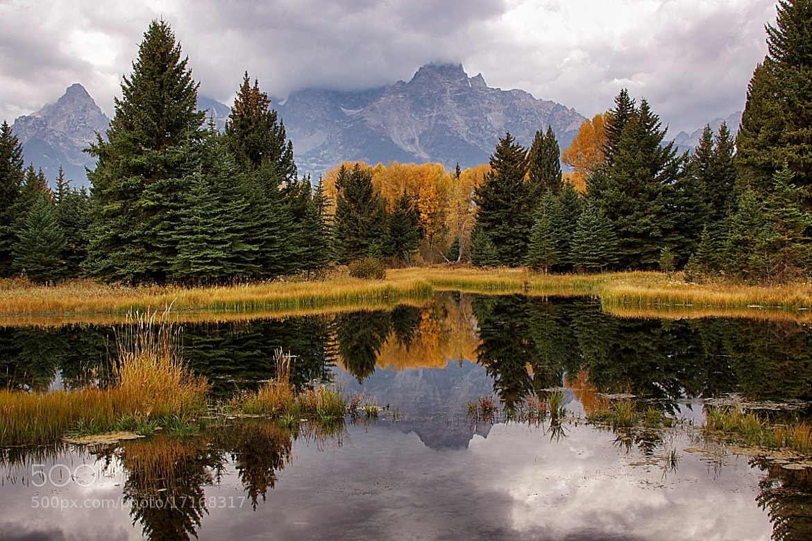 Photograph Teton Reflection by Bill D Bell on 500px