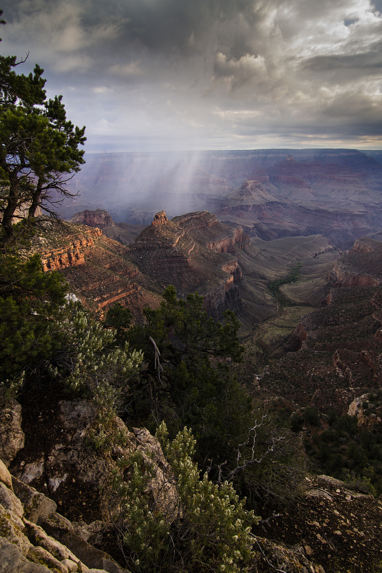 Photograph Grand Canyon Thunderstorm by Stefan Herbst on 500px