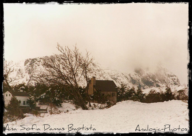 Photograph The snow... by Ana Sofia Baptista on 500px