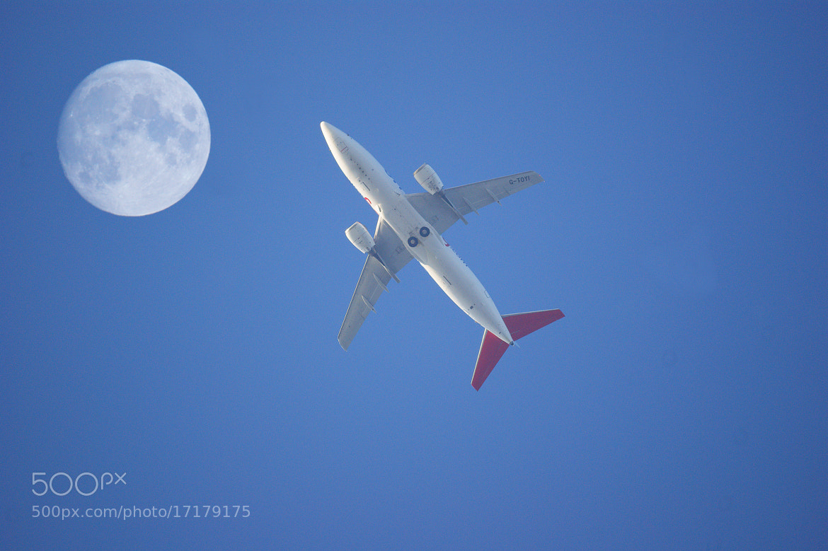 Photograph Fly me to the moon by Steve Adams on 500px