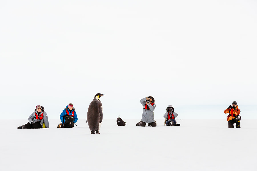 Antarctic photo shoot by Andrew Peacock on 500px.com