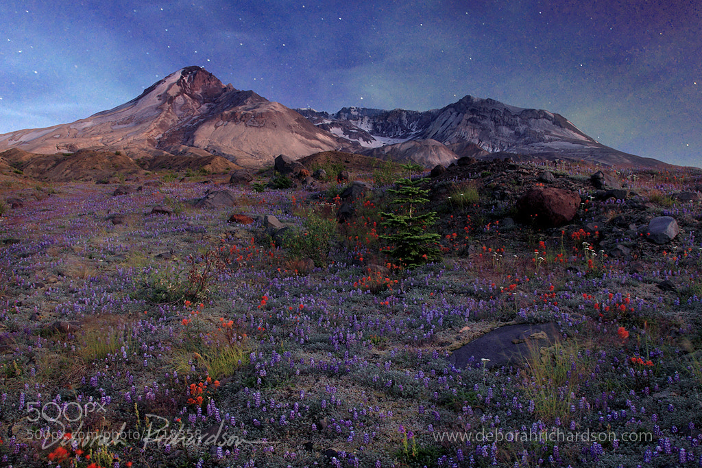 Photograph Mount St. Helens under moonlight by Deborah Baker on 500px