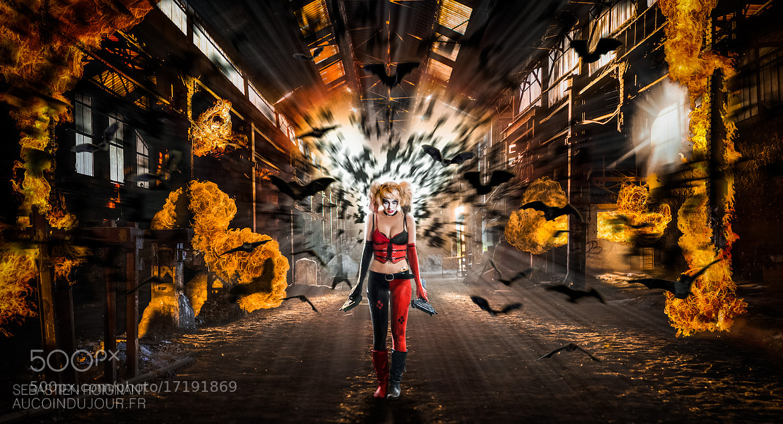 Photograph Harley Quinn by Sébastien Roignant on 500px