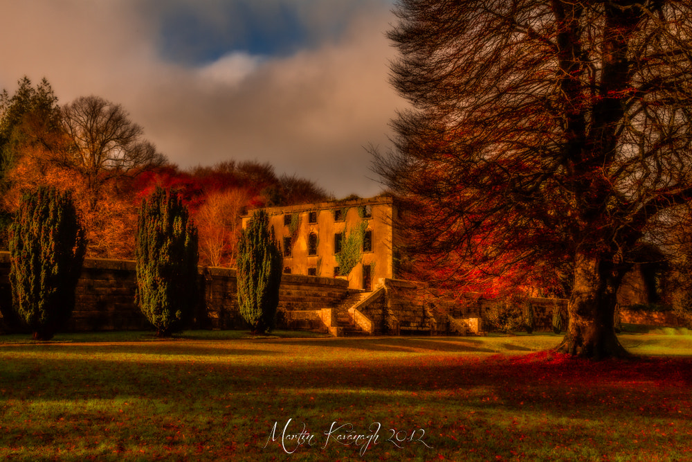 Photograph Once upon an Autumn... by Martin Kavanagh on 500px