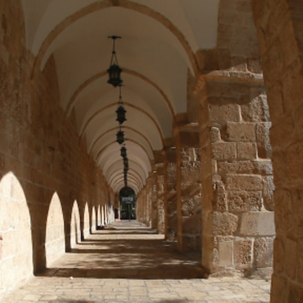 Mosque at Jerusalem, Canon EOS-1D X, Canon EF 15mm f/2.8 Fisheye