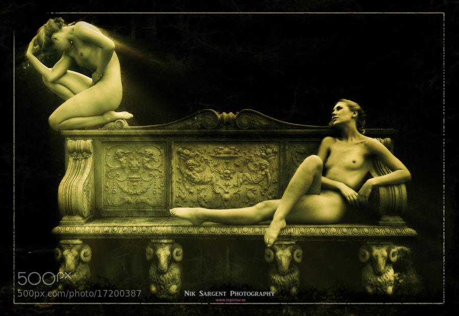 Photograph Regeneration by Nik Sargent on 500px