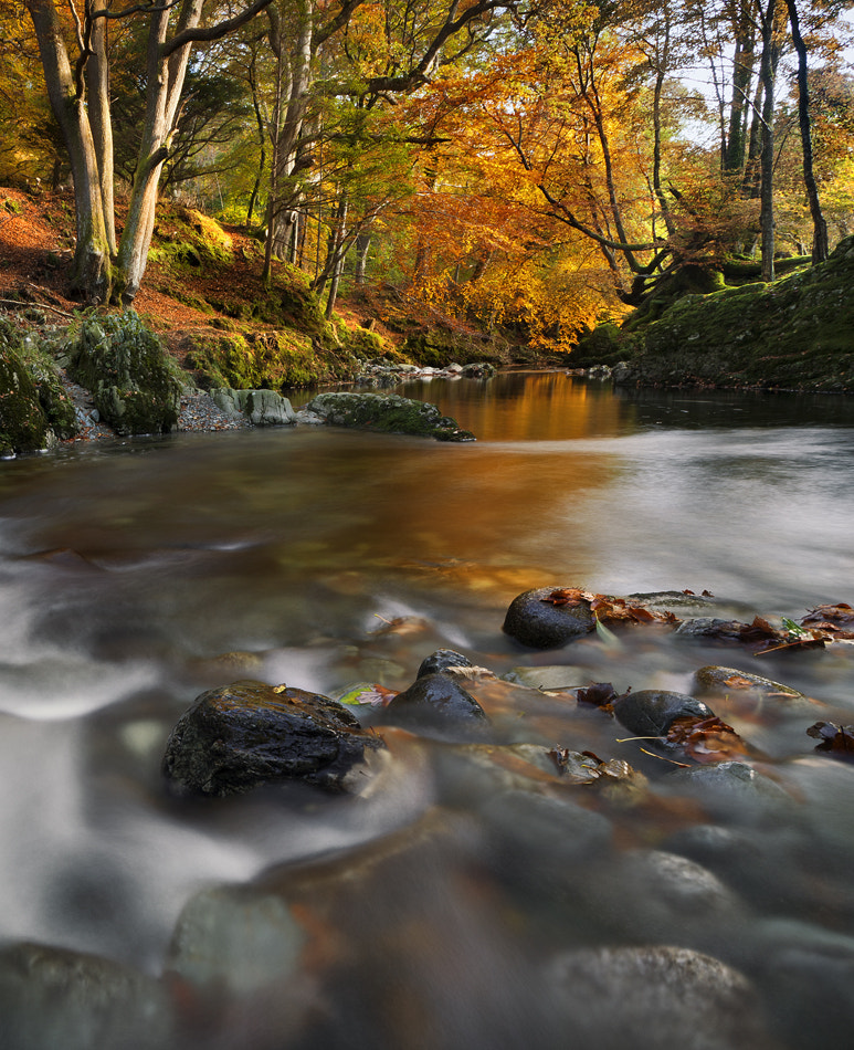 Photograph Shimna Colour by Gary McParland on 500px