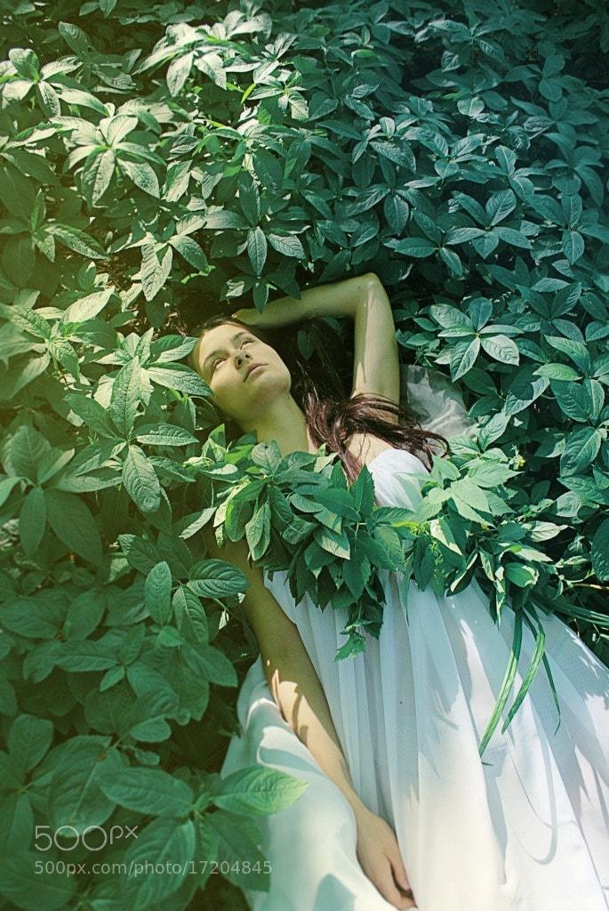 Photograph Untitled by Margarita Ivaschenko on 500px
