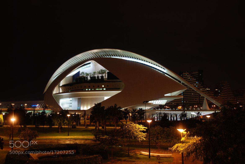 Photograph Palau de les Arts, Valencia, Spain by Armando Latorre on 500px