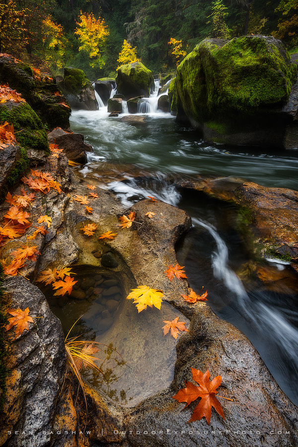 Photograph Battaile Falls by Sean Bagshaw on 500px