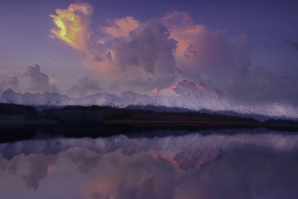 Photograph Reflection Pond In Denali NP by Kevin McNeal on 500px