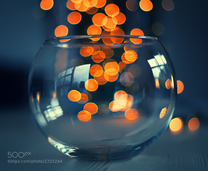Photograph Light Magic by Sortvind  on 500px