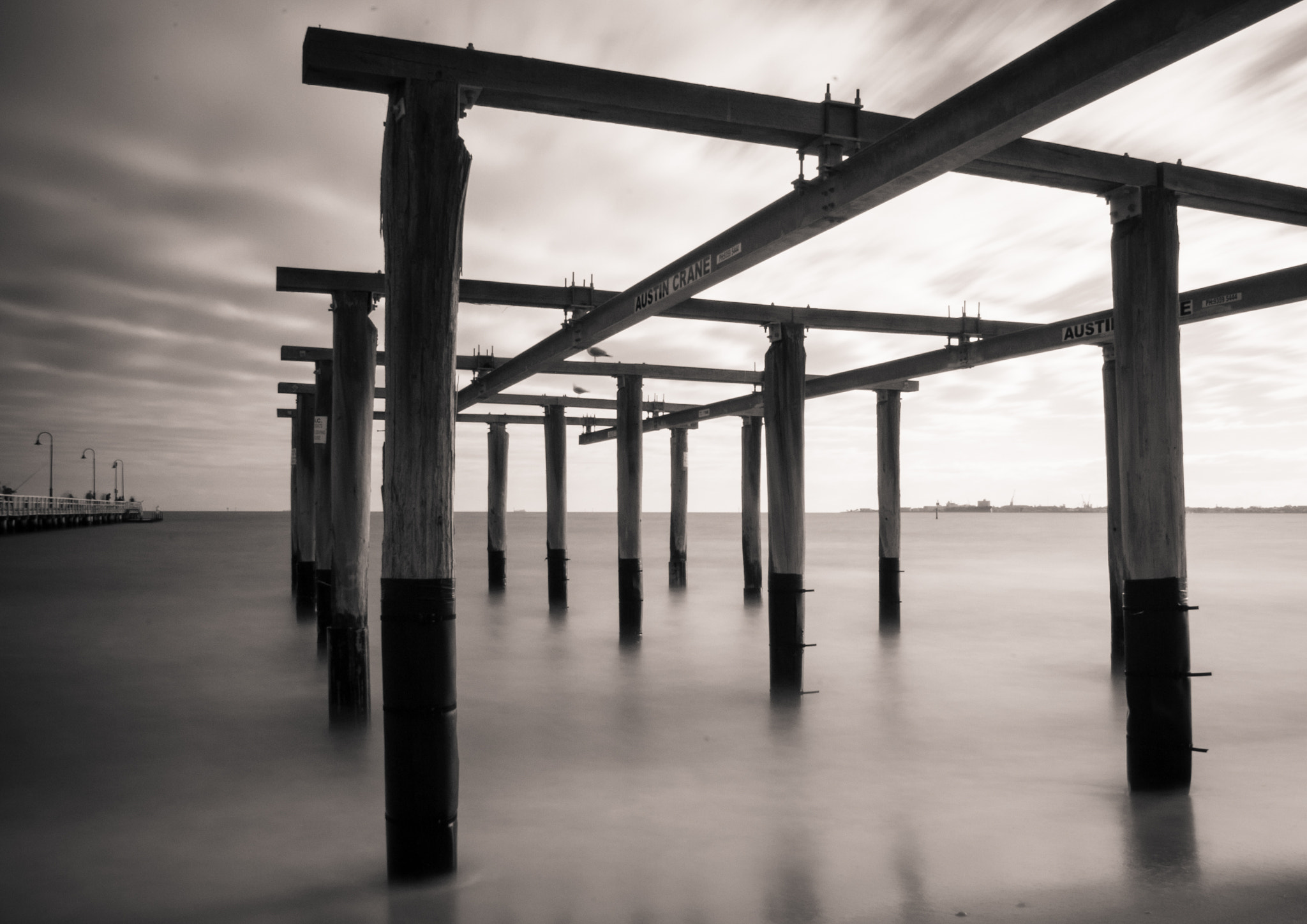 Photograph Feeling the grey by Pat Charles on 500px