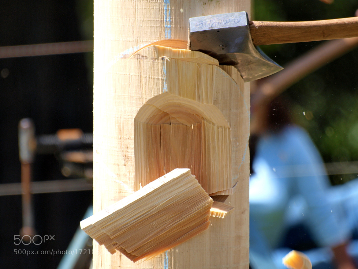 Photograph The Woodchop by di  northey on 500px
