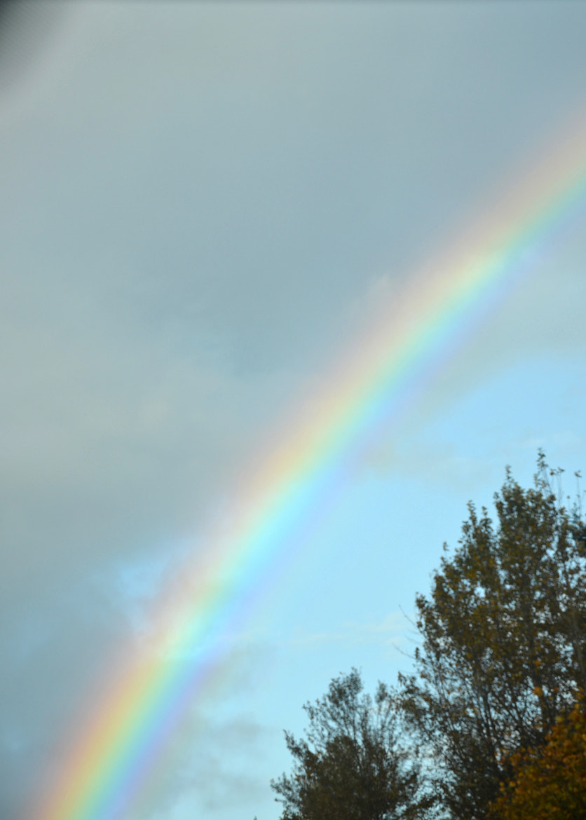 Photograph Rainbow by Paiden Stanley on 500px