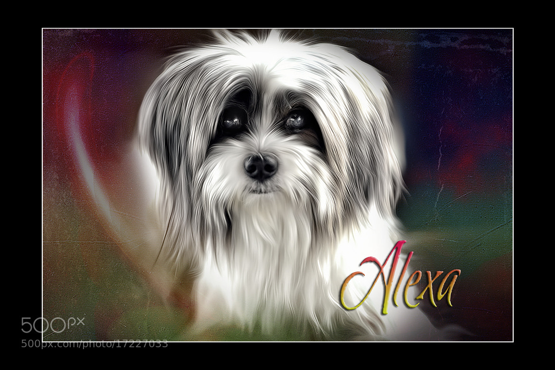 Photograph Alexa by Maybelle Dumlao- Sevillena on 500px