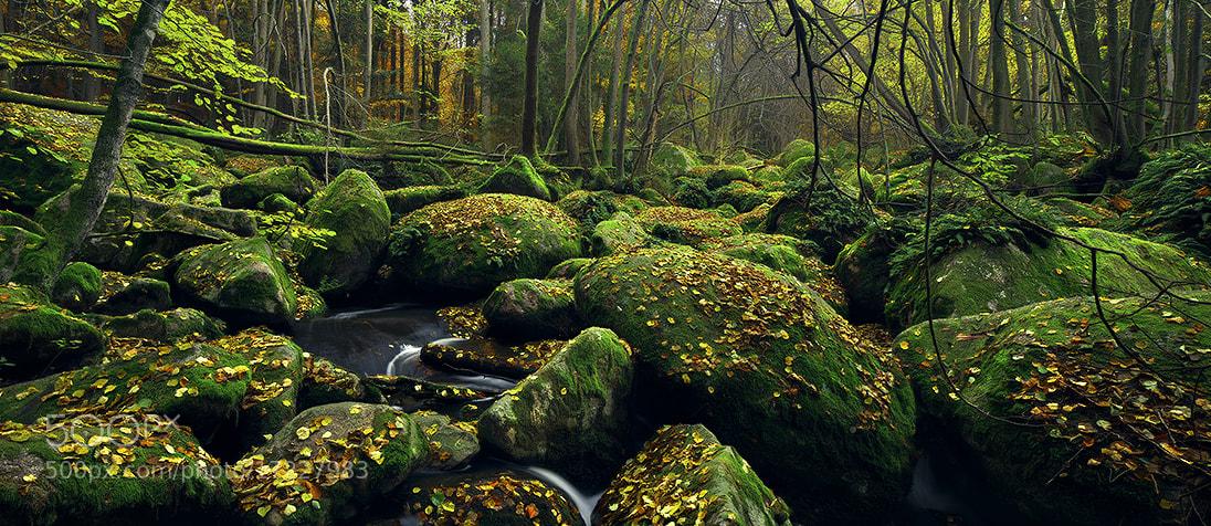 Photograph Hidden Creek by Kilian Schönberger on 500px