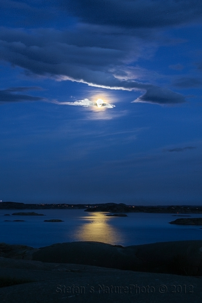 Photograph Moonlight by Stefan Gustavsson on 500px
