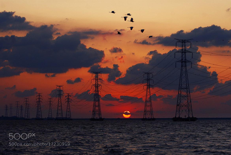Photograph Sunset by Bosun Hong on 500px