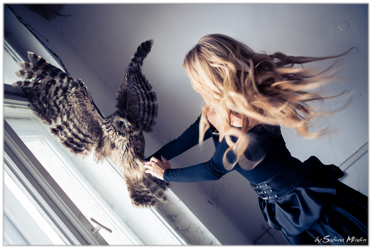 Photograph Fighting the owl by Mladin Sabina on 500px