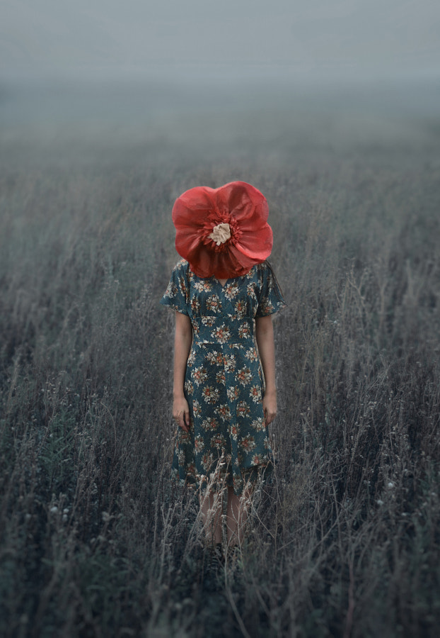 flower by Inna Mosina on 500px.com