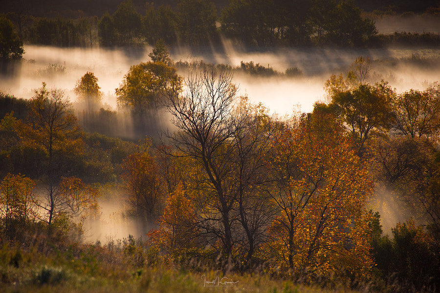 Rays Through The Autumn Valley by Ian McGregor on 500px.com