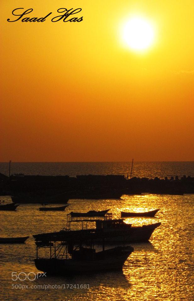 Photograph Untitled by Saad Al-Deen Hassaniya on 500px