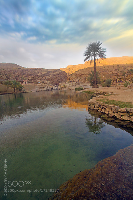 Photograph Wadi Bani Khalid - OMAN by AHMED AL-AUFI on 500px