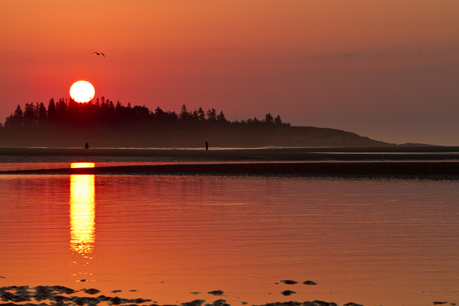 Maine sunrise
