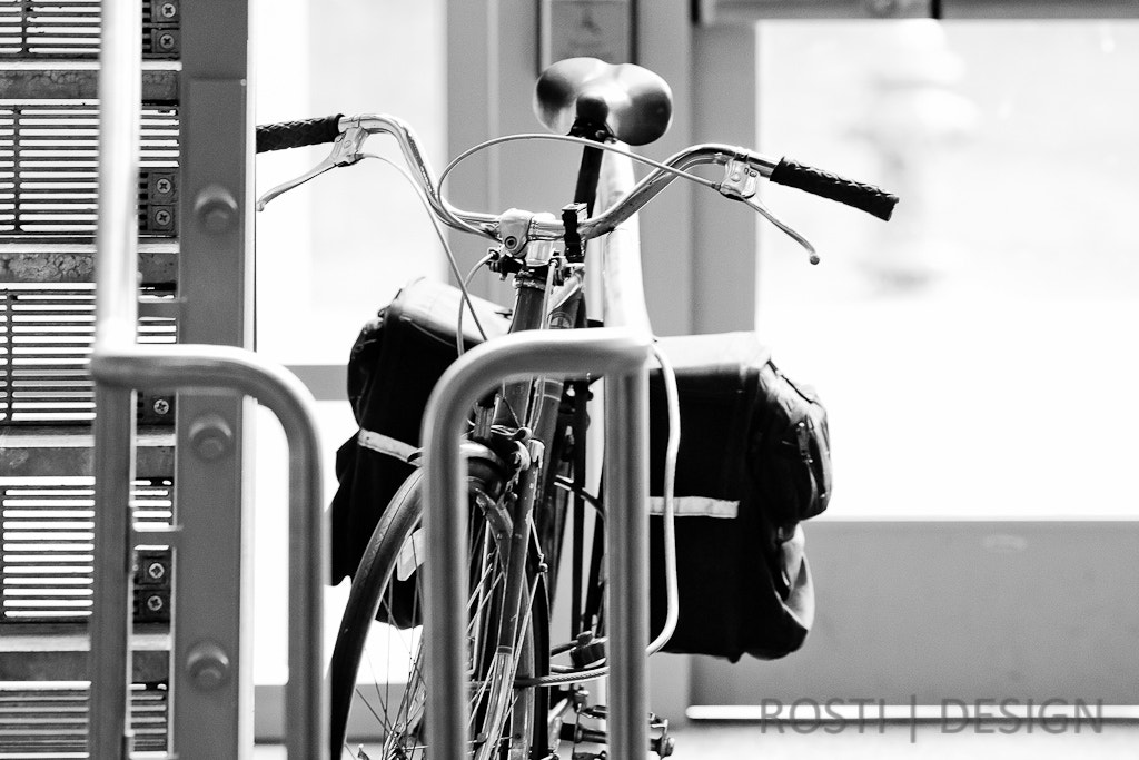 Photograph Standard for transport in College by JOHN MITCHELL on 500px