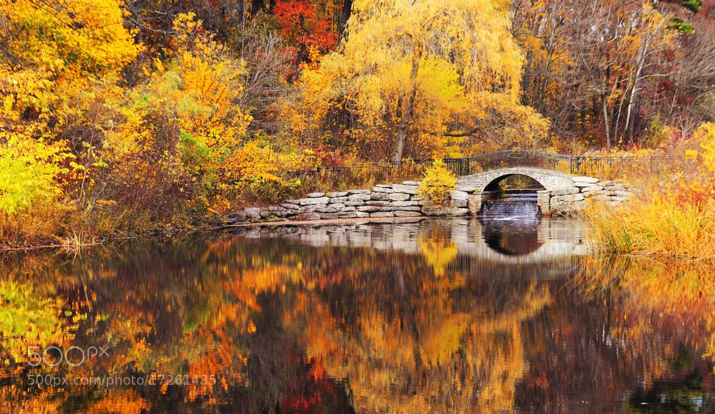 Photograph Bridge Over Fire by Ren Hui Yoong on 500px