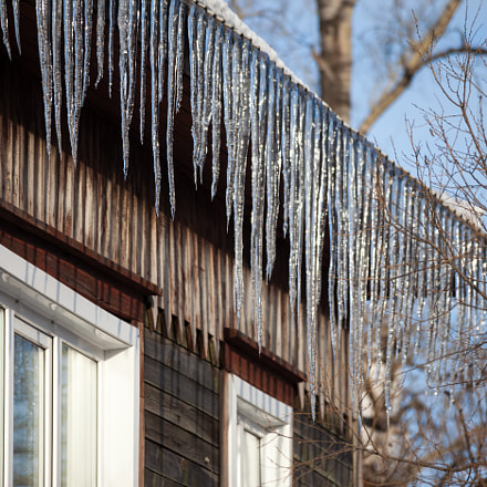 Icicles hanging down from, Canon EOS 5D MARK II, Canon EF 100-300mm f/5.6L