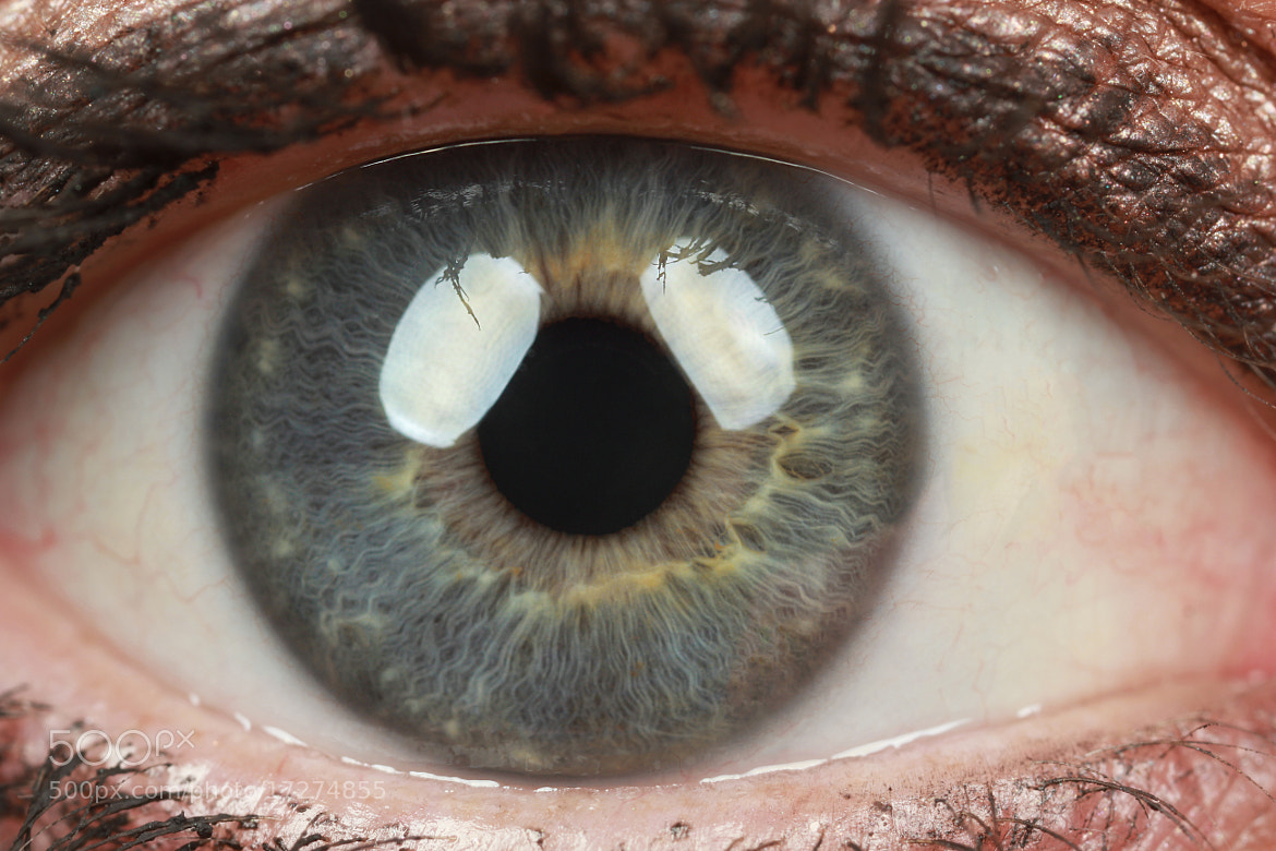 Photograph Eye by Benjamin Puppel on 500px