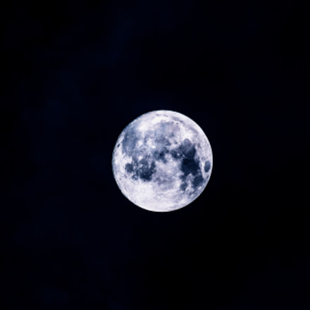 Oops, it's Planet Moon, Canon EOS-1D X MARK II, Sigma 150-600mm f/5-6.3 DG OS HSM | S