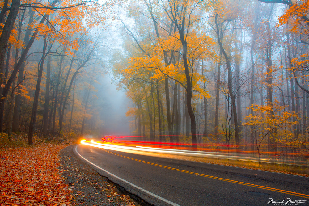 Photograph The Fog, Fall and Trails by Manish Mamtani on 500px