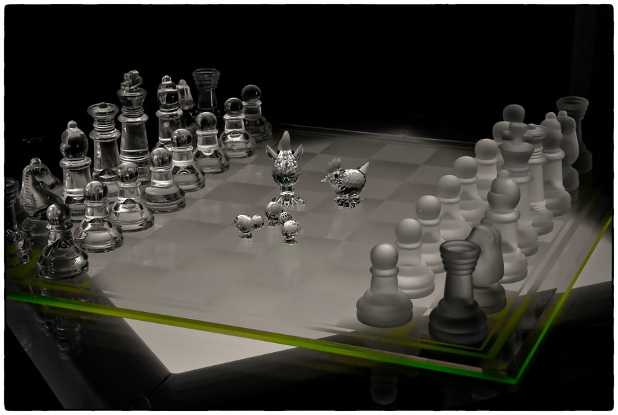 Photograph Chess Chickens by Cor Pijpers on 500px