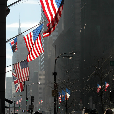 The Flags of Manhattan, Nikon E5700