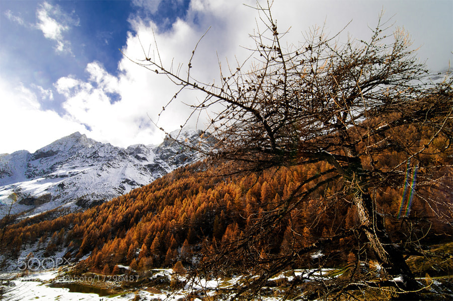 Photograph Autumn in the Aosta valley by claudio naboni on 500px