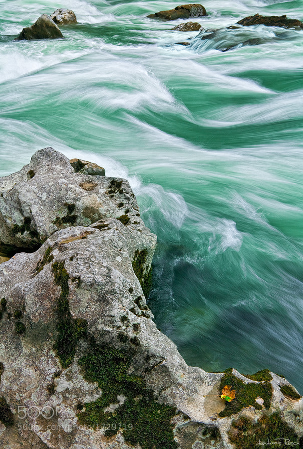 Photograph Wild Water by Andreas Resch on 500px