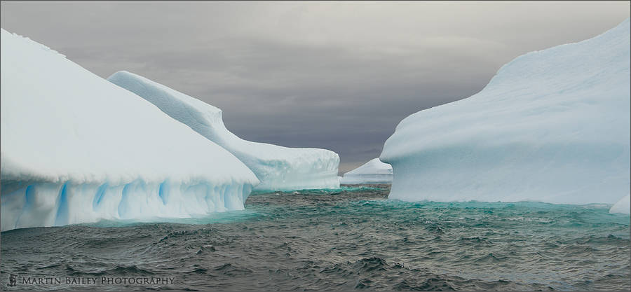 Photograph Iceberg Alley by Martin Bailey on 500px