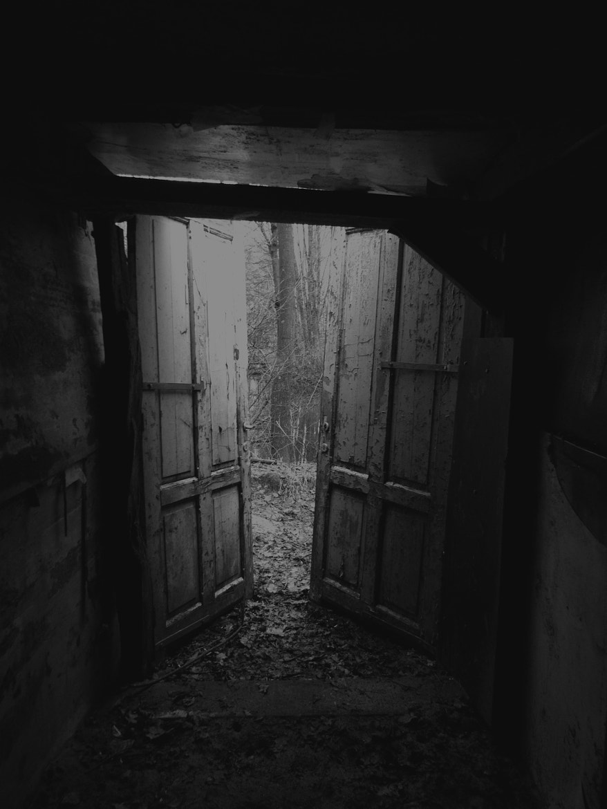 Photograph Doors to mystery by Minthe Volders on 500px