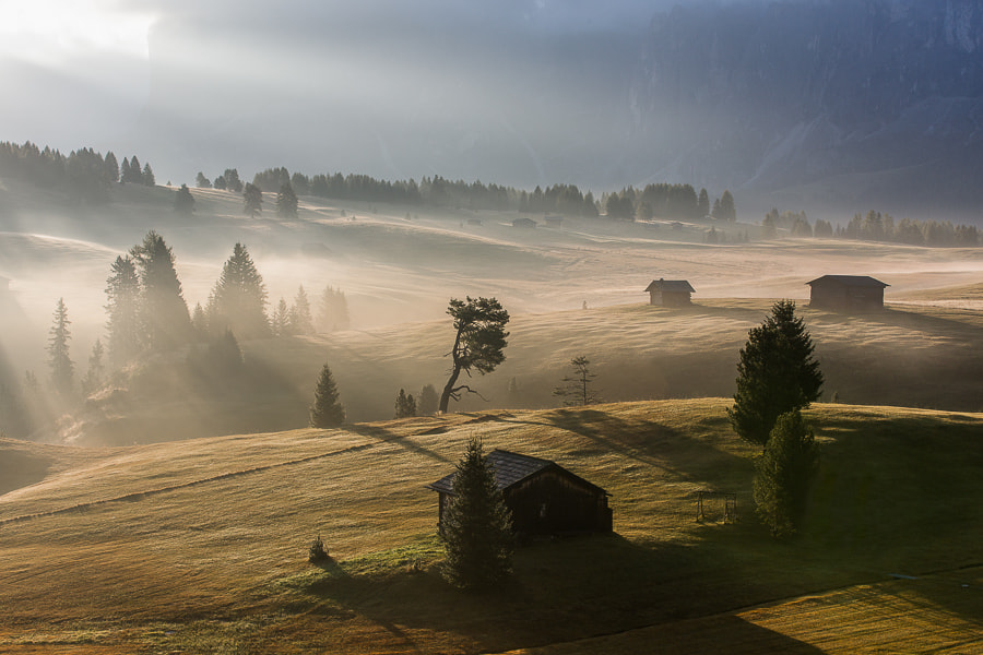Photograph Morning rays at Alpe di Siusi by Hans Kruse on 500px
