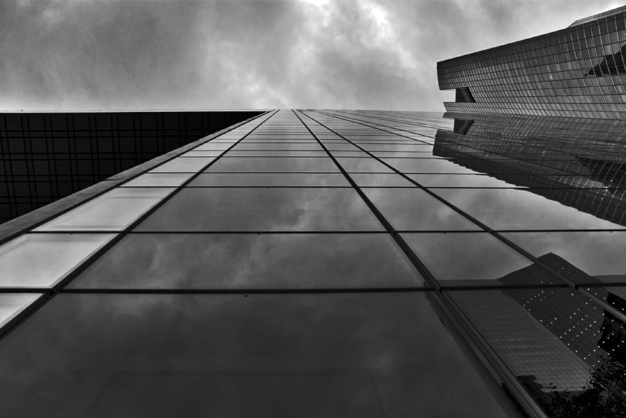 Photograph Some lines conducting to a drama by Yann Thoyer on 500px