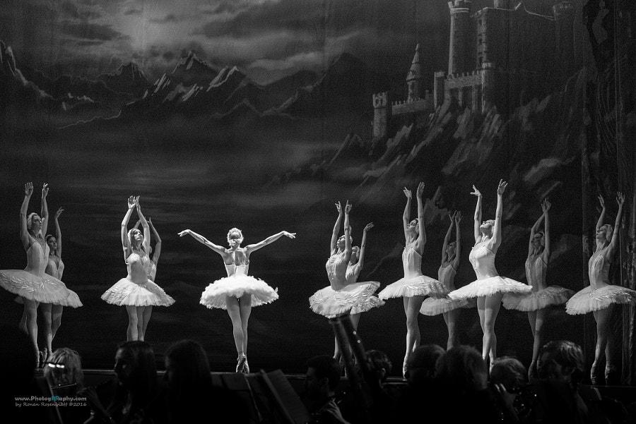 Swan Lake Ballet #1