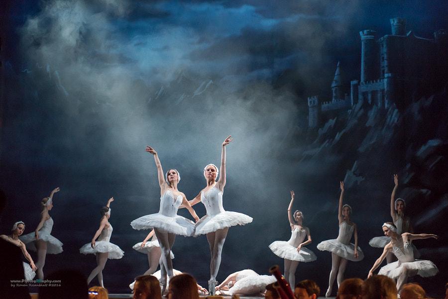 Swan Lake Ballet #2