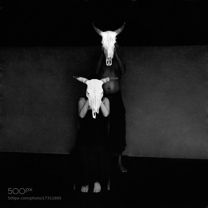 Photograph The spirit of the Ox. by Fred Melot on 500px